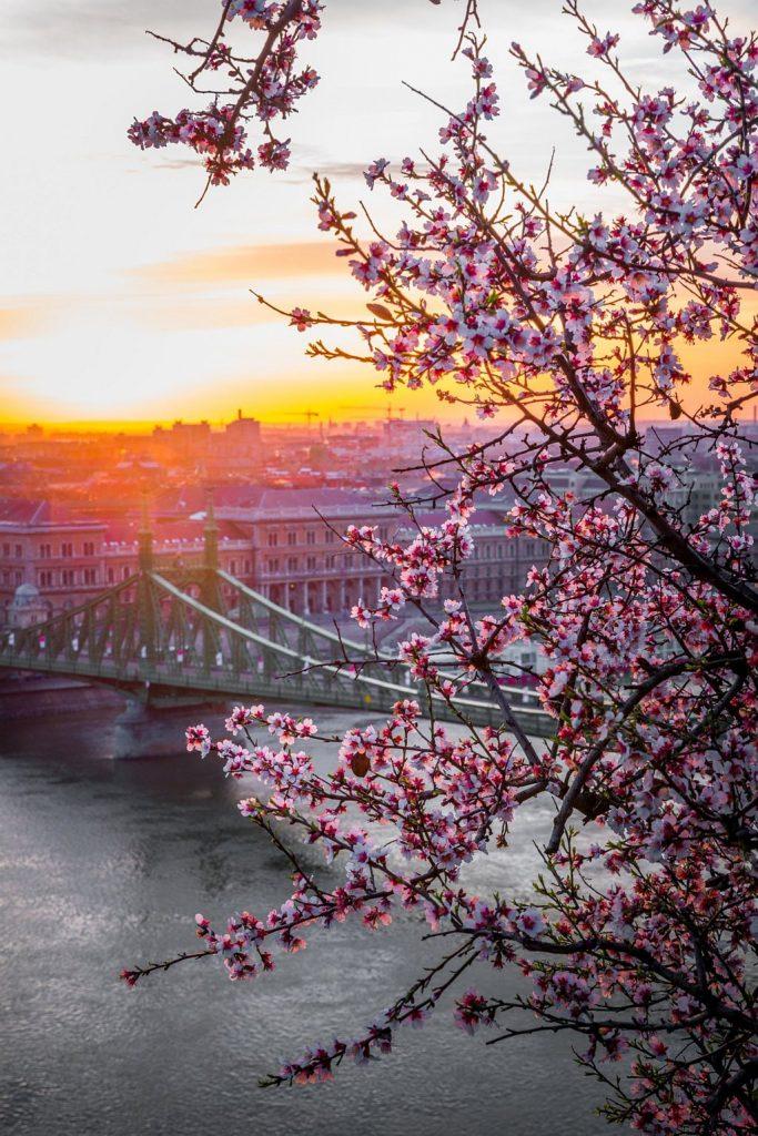 Wycieczki do Budapesztu – miejsca godne odwiedzenia